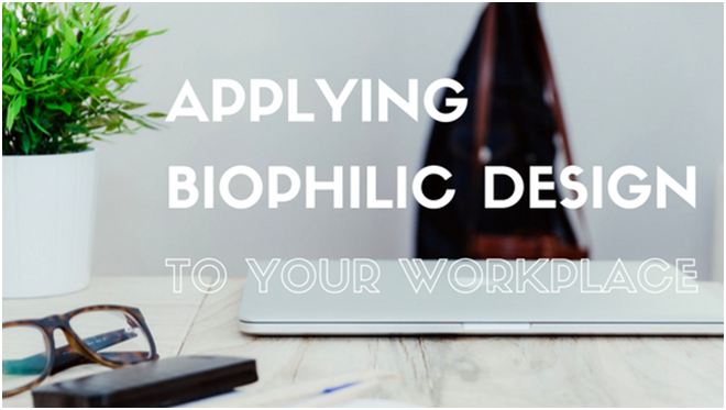 Applying Biophilic design to your workplace